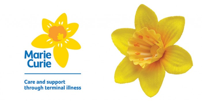 Knit A Daffodil For Charity 12th 16th March Fine Fettle Fibres