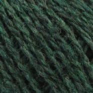 Conifer 336