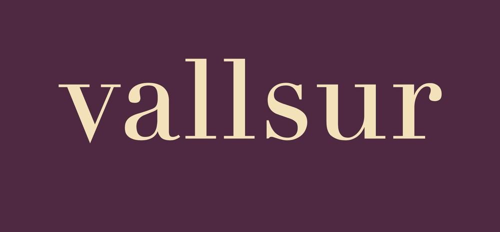 logo_vallsur_2014.jpg