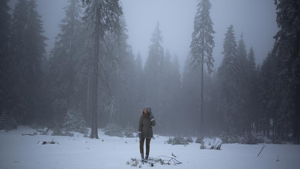 Pădure - Mathieu Le Lay ©