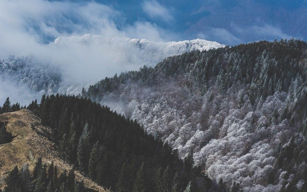Anotimpuri peste munte.jpg