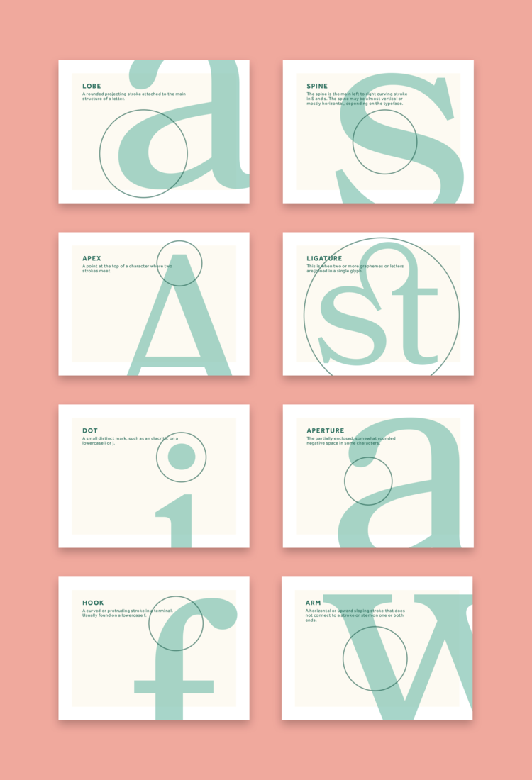 Type Anatomy — Sean Goodwin