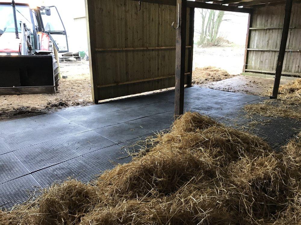Løsdrifter er indrettet med gummimåtter der letter det daglige arbejde og samtidig sikrer hestene et blødt leje