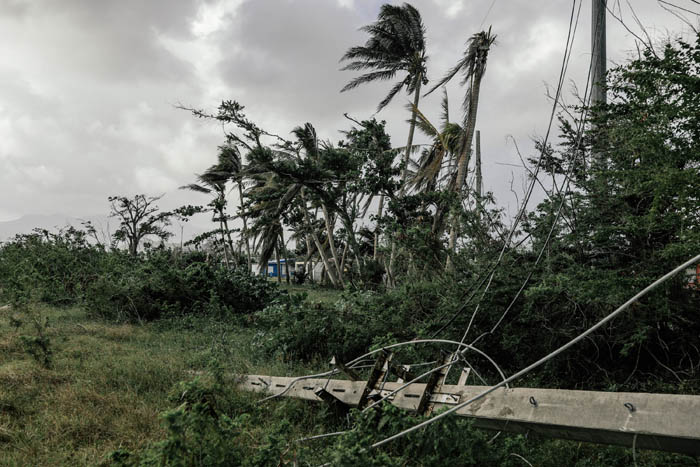 February 12, 2018: Punta Santiago, Humacao Puerto Rico -  A downed power line in Punta Santiago. Nearly 5 months after Hurricane Maria reached the island around 1/3 of Puerto Rico is still without power.  After a catastrophic hurricane, rates of mental illness continue to rise.