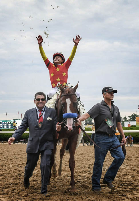 "Jockey Mike Smith throws rose petals in the air as he  celebrates riding ""Justify"" to a Triple Crown Victory in the 150th running of the Belmont Stakes at Belmont Racetrack on June 9, 2018. Justify is the latest of only the 13th horses in the History of Thoroughbred Racing to win the coveted Triple Crown."