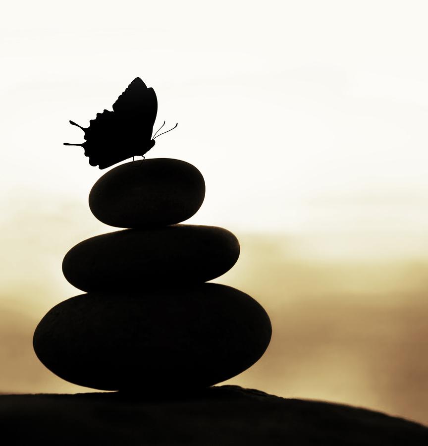 bigstock-Image-of-zen-balance-still-lif-38719861-1.jpg