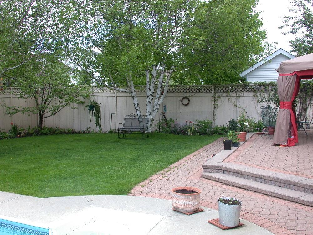 Back yard pics 014.jpg