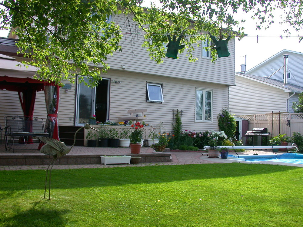 Garden June 2009 049.jpg
