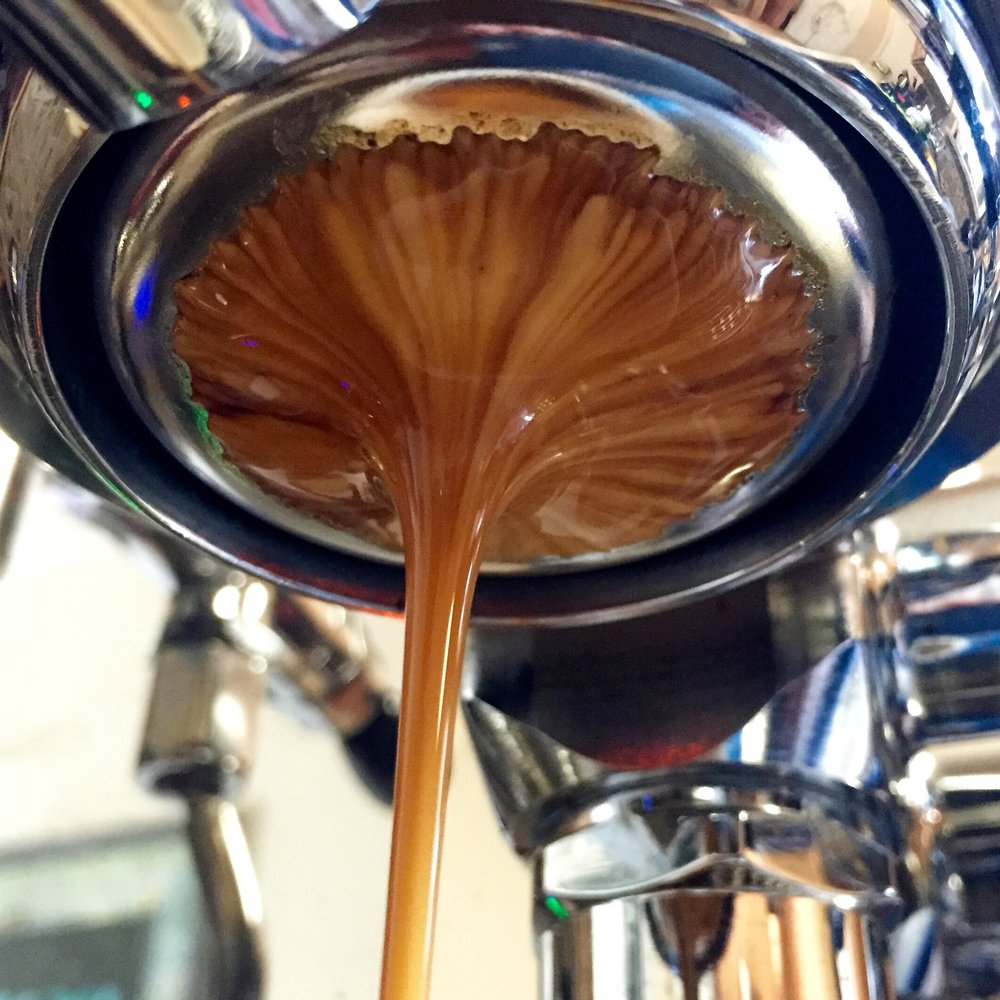 A friendly espresso blend will help get you pulling #espressoporn quality shots in no time.