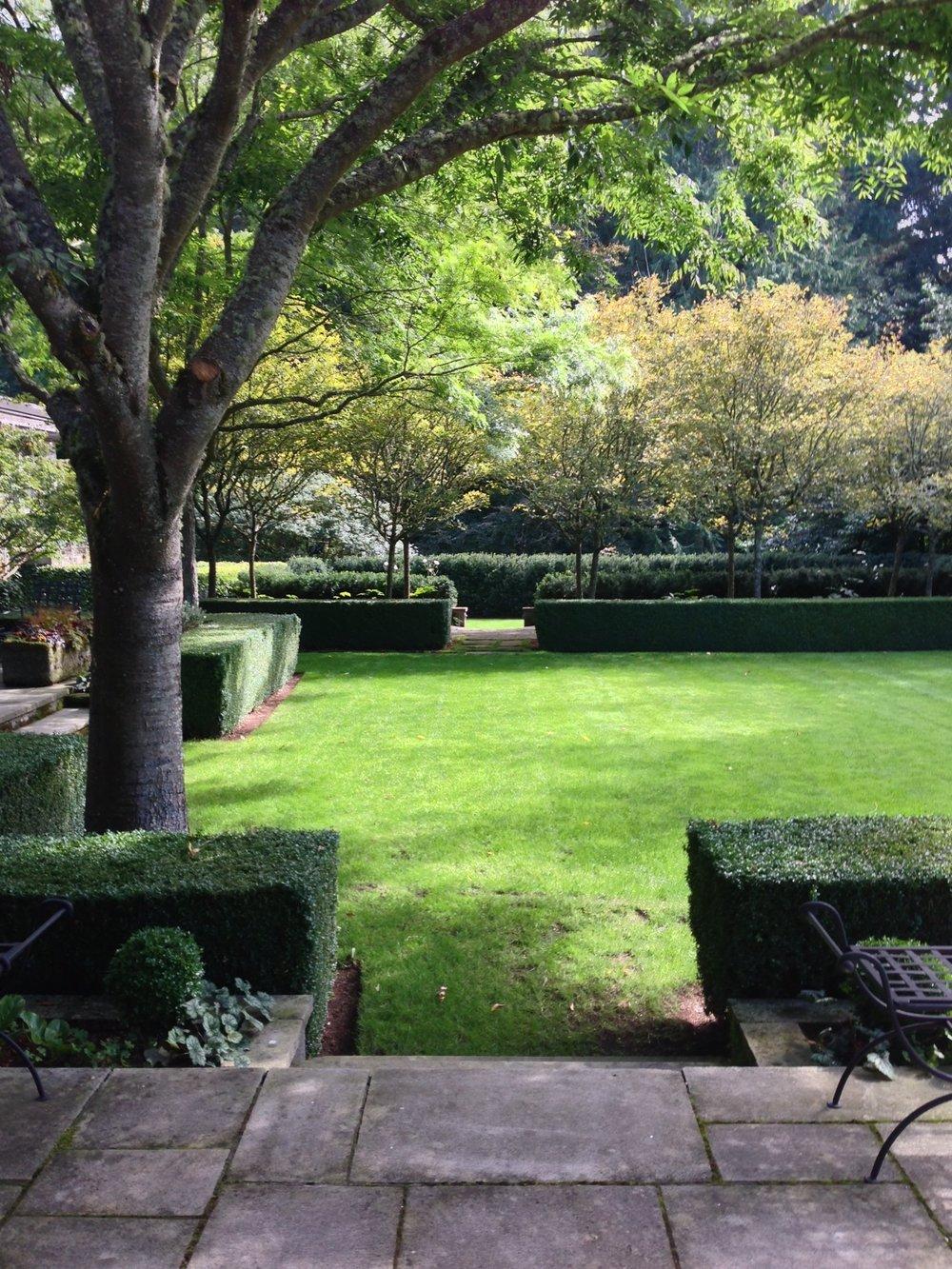 andrew garden detail 1.JPG