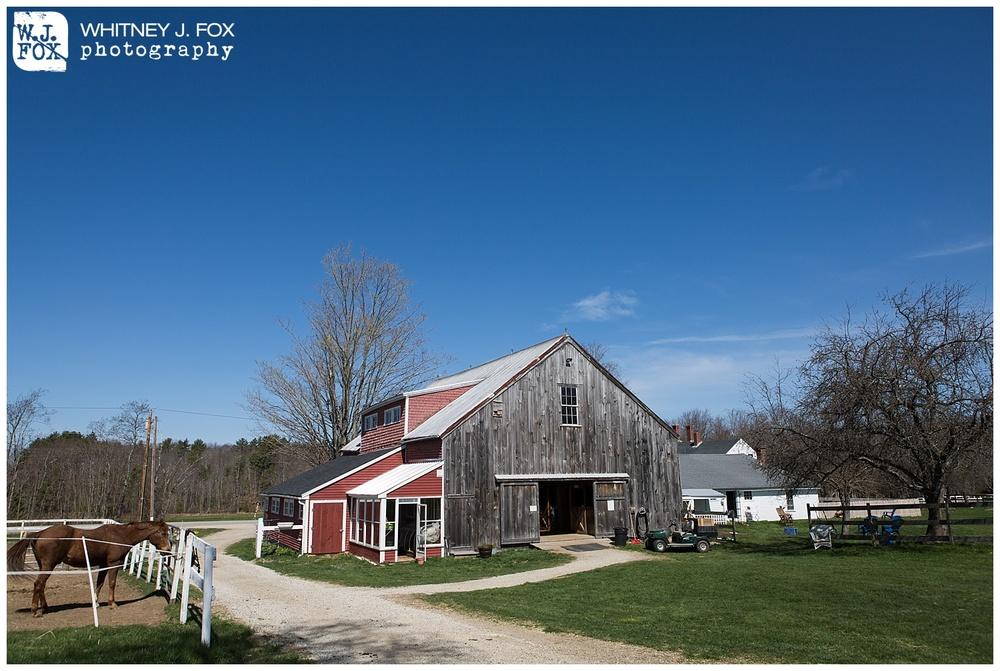 homestead_rest_and_be_thankful_farm_lyman_maine_rustic_wedding_venue_whitney_j_fox_weddings_1358.jpg