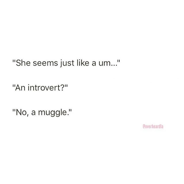 Pretty sure @overheardla just heard me speaking at any given moment 😂🙈💕⚡️ where my HP lovers at?!