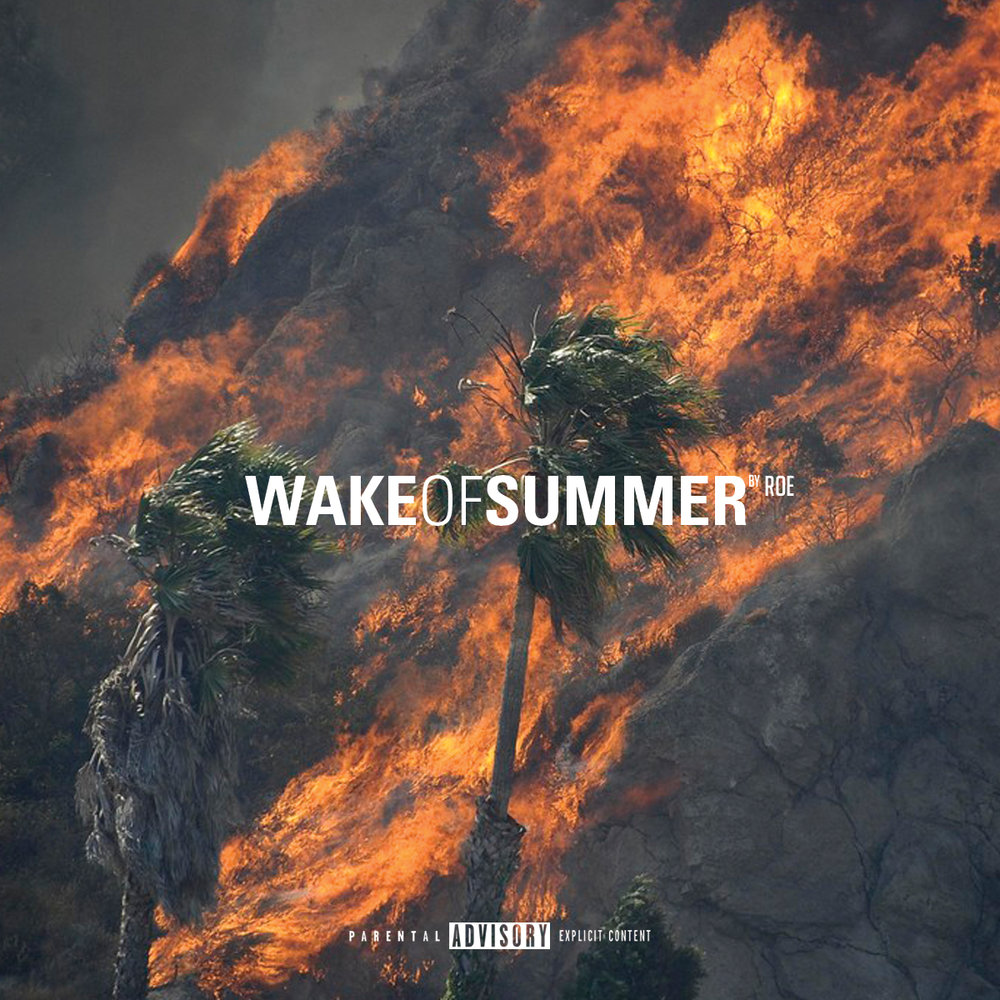 Wake of Summer (2017)   Just in time for the summer. Wake Of Summer is full of songs guaranteed to set your speakers ablaze.