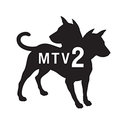 Mtv213.png