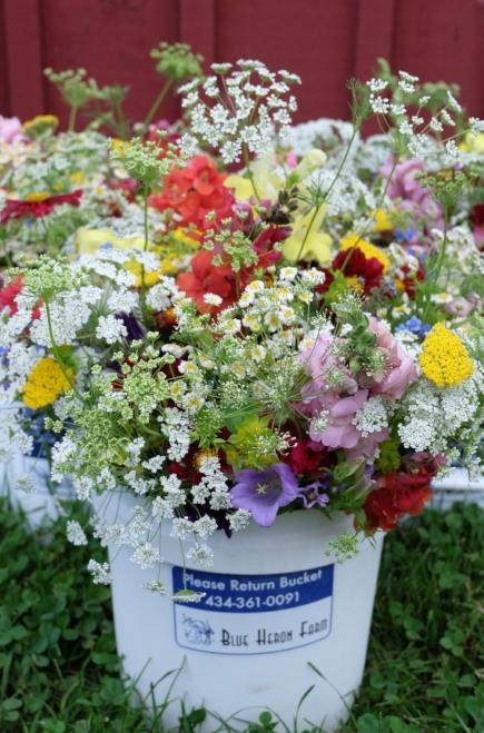 June CSA Bouquets