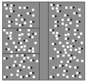 Schematic illustration of motion coherence stimulus. The display consisted of an array of 2000 dots (4 dots/deg2), a fixed proportion of which (initially 100%) oscillated coherently. A subject's task was to locate a target strip (presented here left of centre), in which the coherently moving dots oscillated in opposite phase to those in the surrounding region.