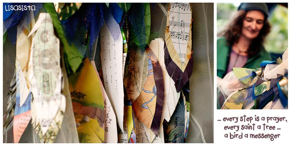 birdsong_cooroora_site_-11.jpg