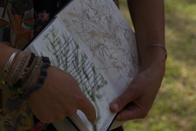 Poetics of Place - a immersive nature writing workshop with Dr Tamsin Kerr.