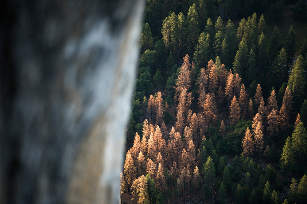 Shooting from 7,000ft in Yosemite this April