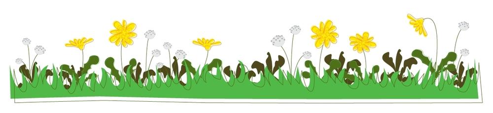 organic-lawn-weed-control