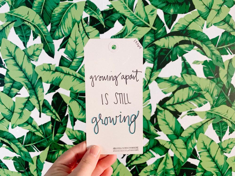 growing growth friendship share love everywhere