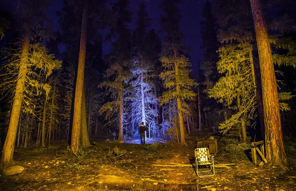 3chairinforest.jpg