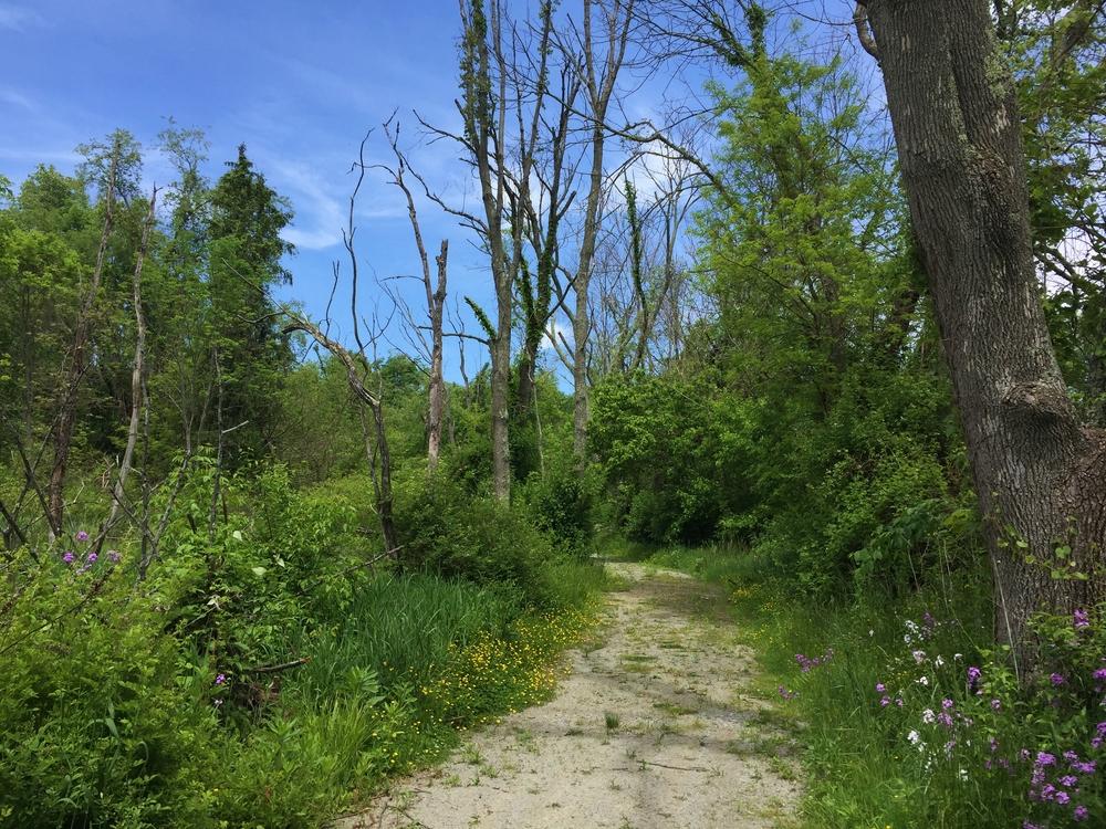 West Overton Village Trail