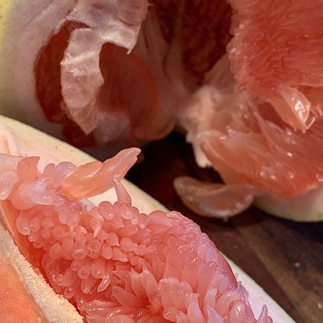 Pomelo...so soft in color and so beautiful. This one I scored the peel, but then ripped open. It reminded me of a type of Chrysanthemum. I ventured out of my new hood and found an Asian market with some great produce :)) These are filled with vitamin C. Originally from Southeast Asia. I think they were mixed with the sweet orange to get our grapefruit. It tastes similar to a grapefruit, only without the bitter taste. #winterheaven #pomelo #vegan #fruitrocks