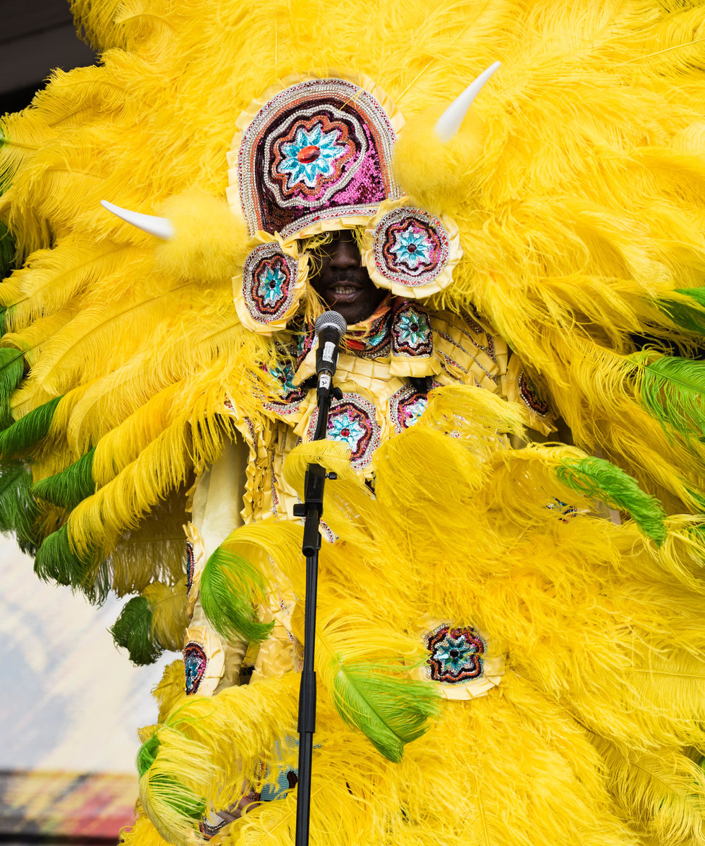 Big Chief Bird and The Indian Hunters  02.jpg
