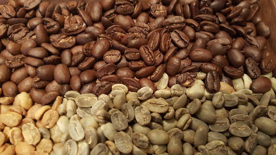 1 - 1 - Nicaragua Maracatuarra - October 2015 roasting at the Starbucks Roastery.jpg