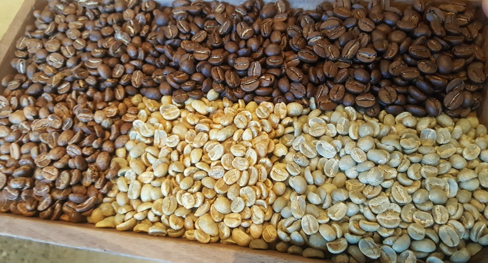 1 - 1 - 20160529_165155 green to fully roasted Burundi Procasta coffee -Roasted by Mikey.jpg
