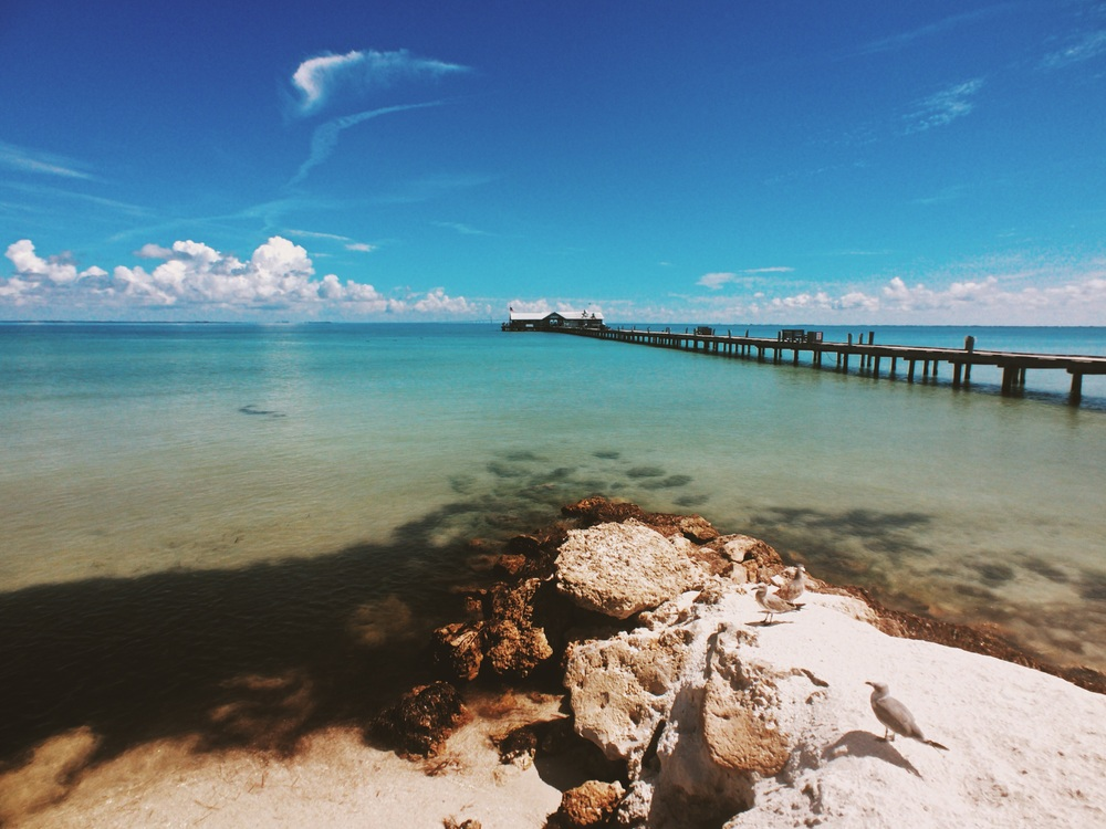 Anna Maria City Pier, the pier is over 105 years old and used to be used as a cargo dock before being made a restaurant.