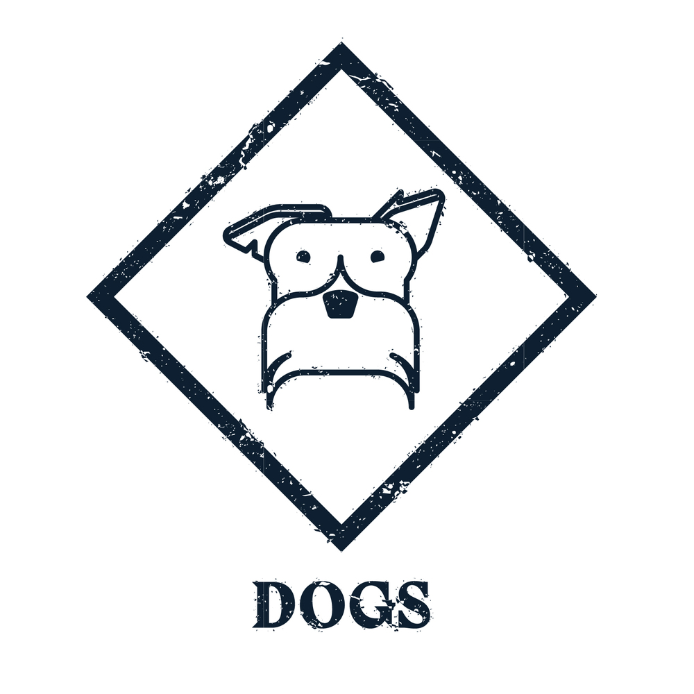 Northwich pet shop, dog subscription box UK, button to online dog shop
