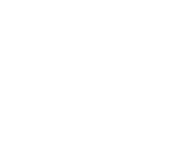 Hastings Airport Association