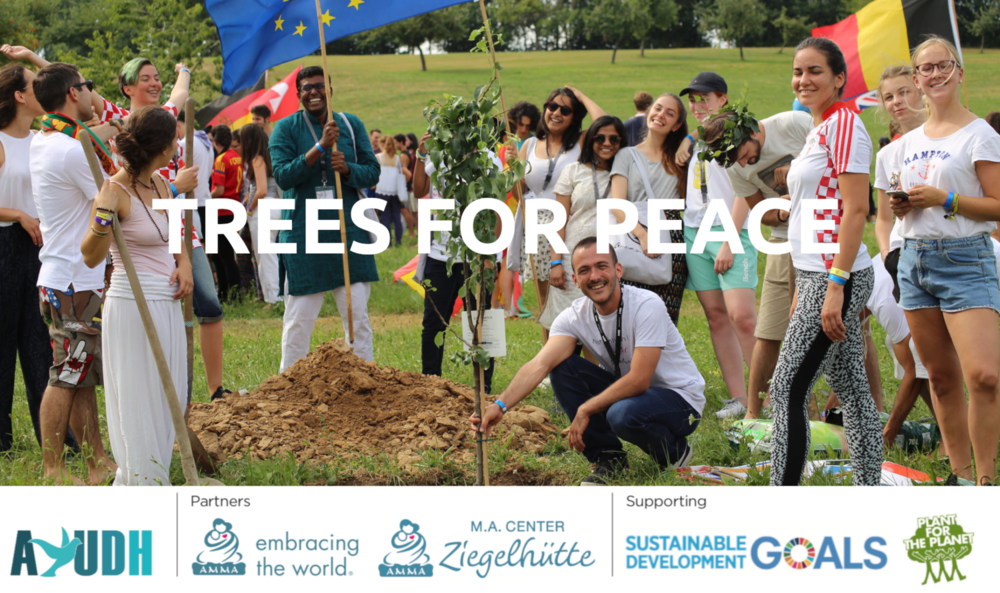 Banner1_SocialMedia trees4peace mit Partners.png