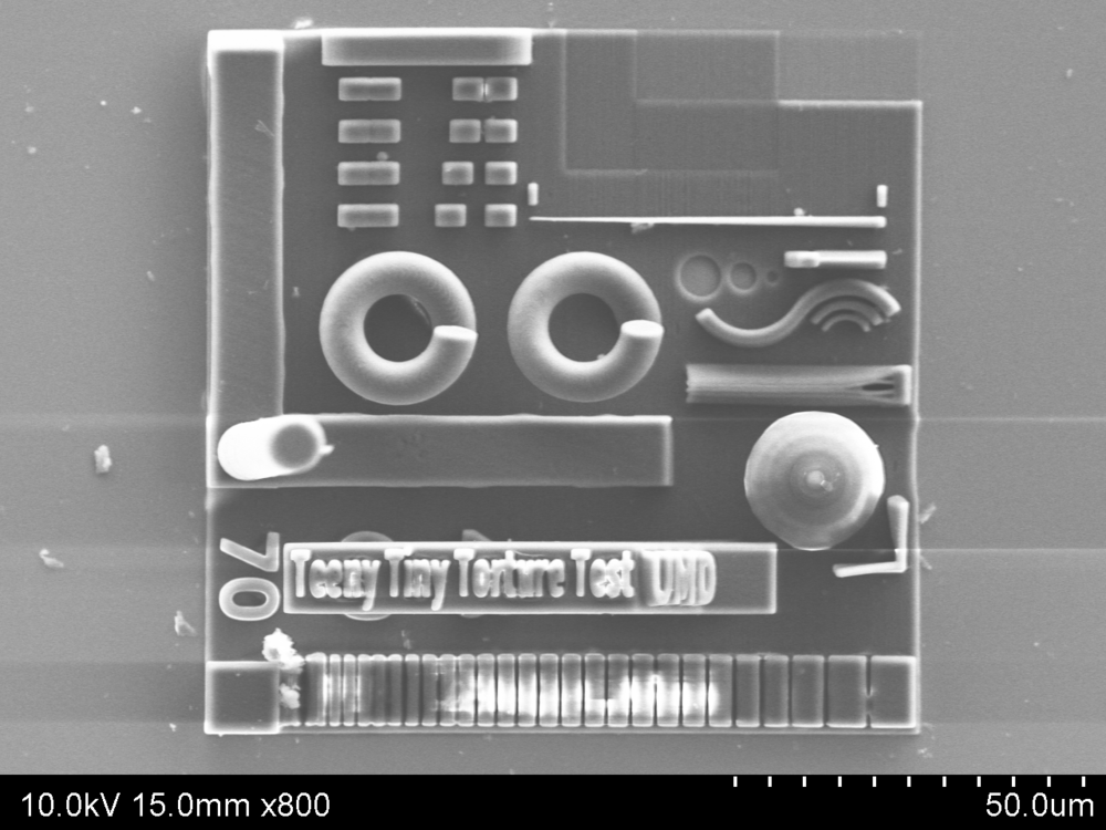SEM image of the TeenyTinyTortureTest. Seriously though, this thing is REALLY SMALL.