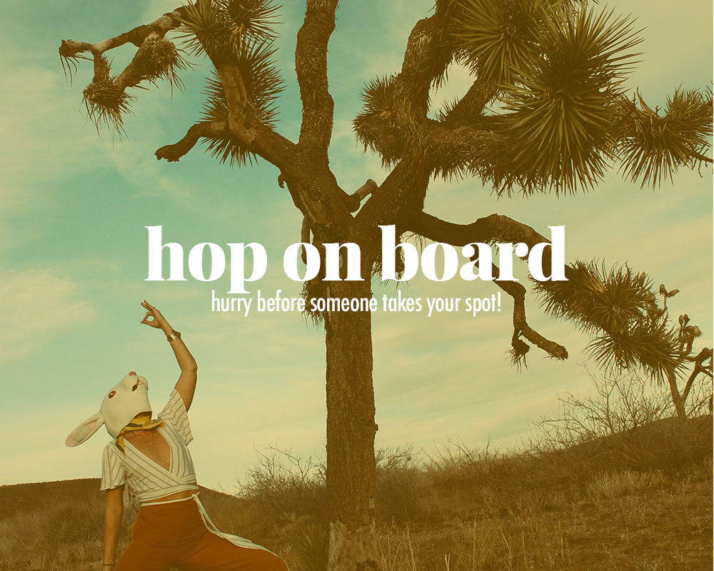 Hop-on-Board-joshua-tree-white-rabbit-trips.png
