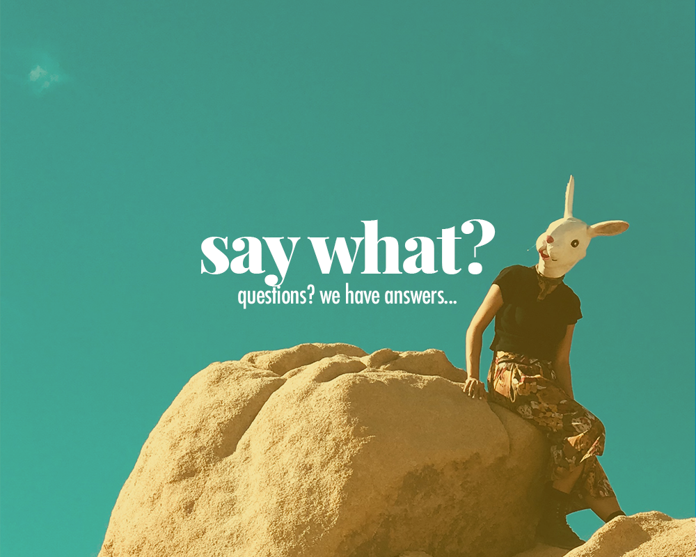 Say-What-joshua-tree-white-rabbit-trips.png
