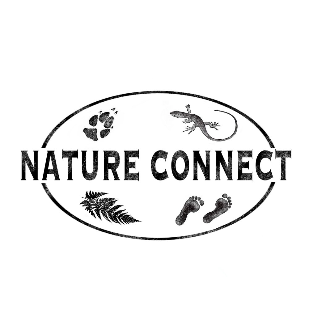 Nature Connect Logo.jpg