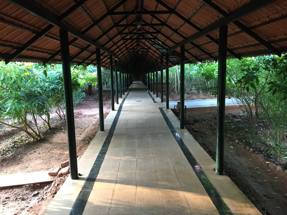 1 The corridor surrounded by Herbal  plants.jpg