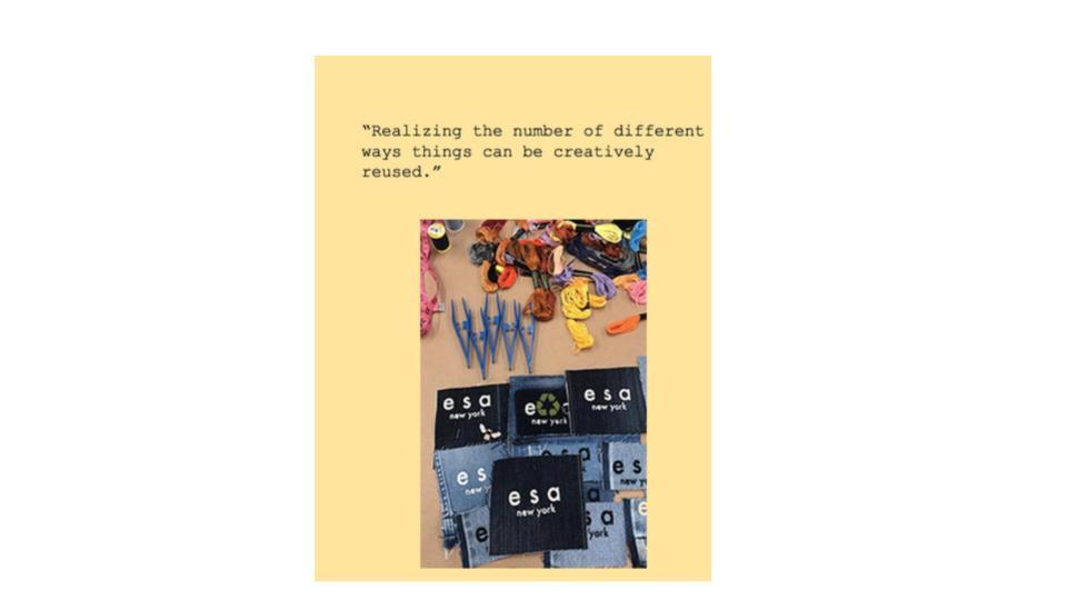 Copy of esa impact report creative (1).jpg