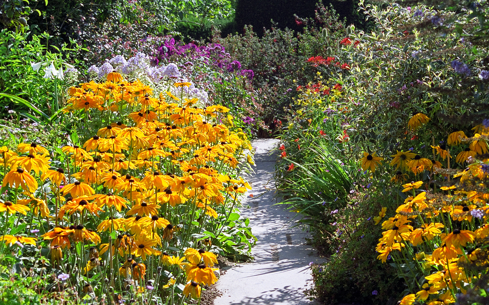 MAMGA, WIMGA, and UW Extension are separate organizations that function together to benefit Master Gardeners in south-central Wisconsin.  Photo: UKGardenPhotos, Creative Commons.
