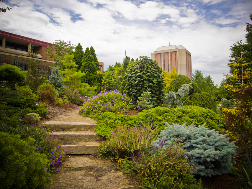 The Allen Centennial Gardens.  Photo: Kenneth Casper, Creative Commons.