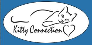 copy-logo-header-background-alt1.png