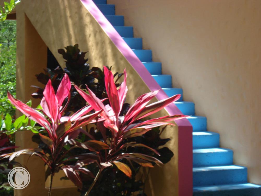 exterior-costa-rica-cornelius-construction (4).jpg