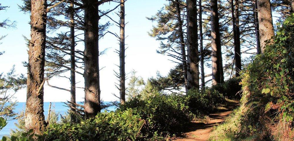 coast-trail.jpeg