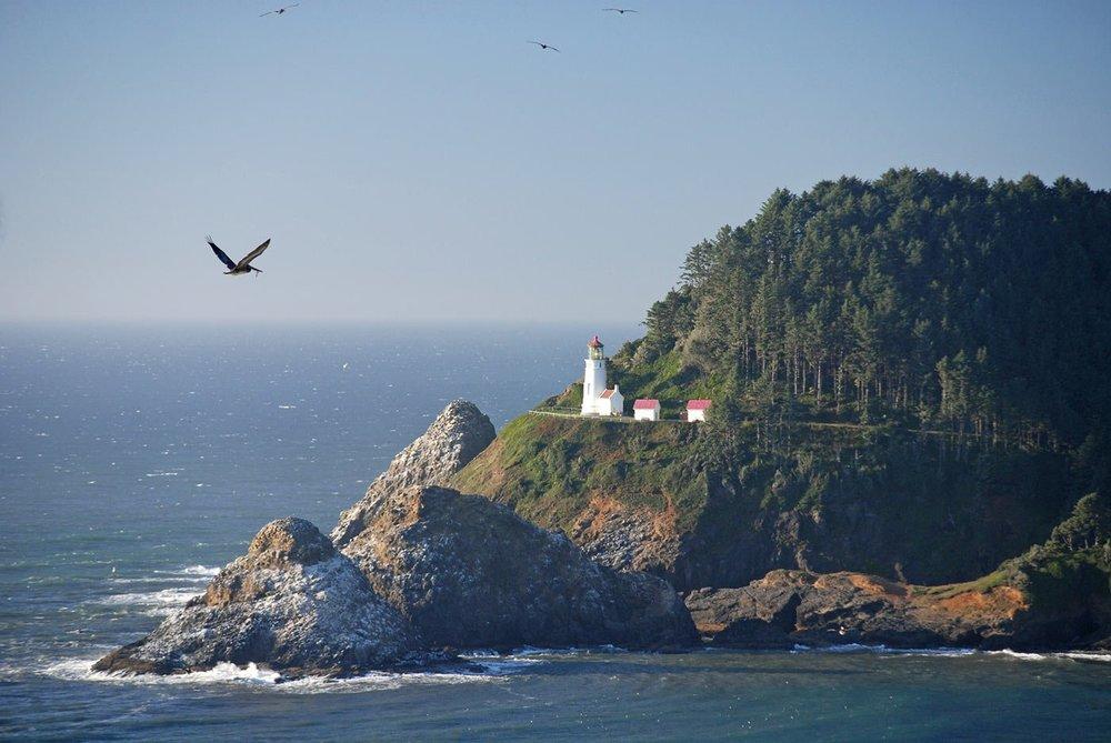 heceta-head-lighthouse.jpeg