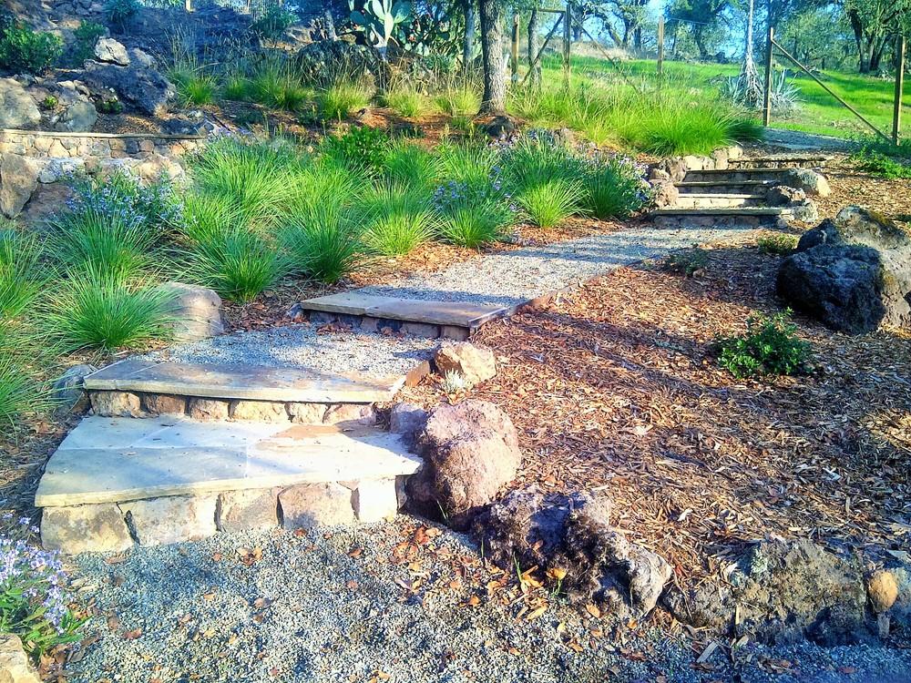 gravel pathway stone steps reyes landscape construction (2).jpg