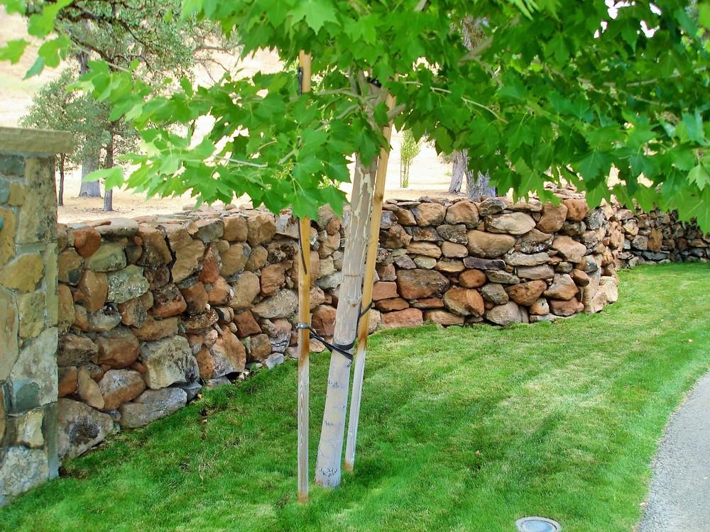 natural stone walls (2).JPG