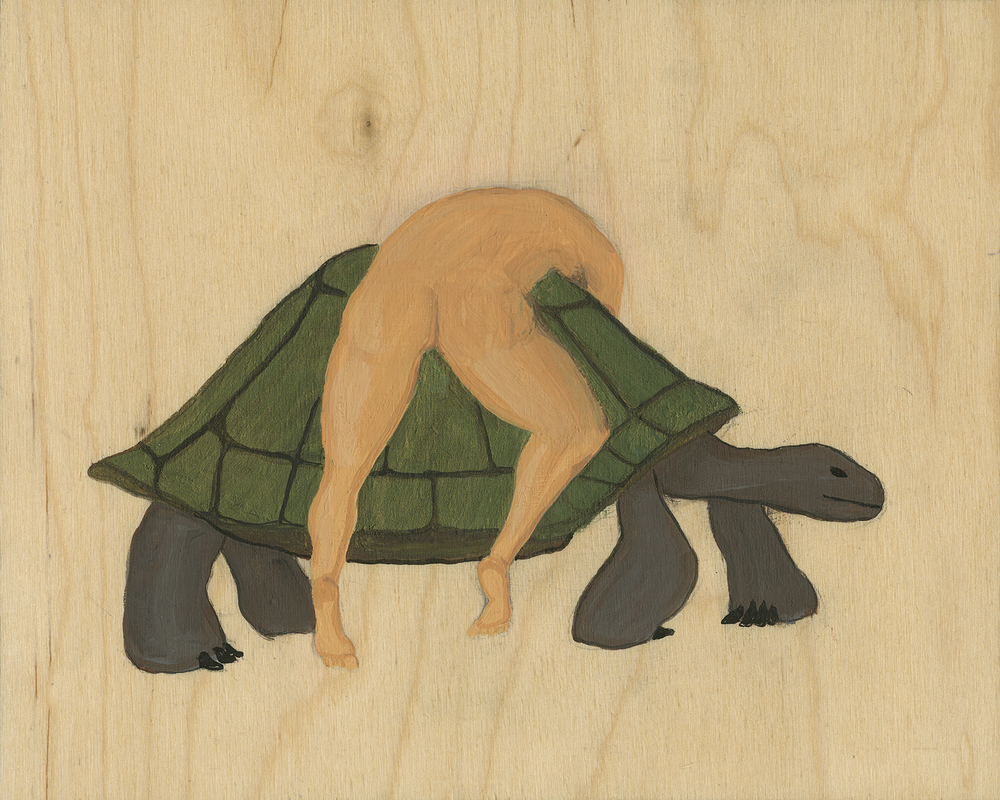 Tortoise #2